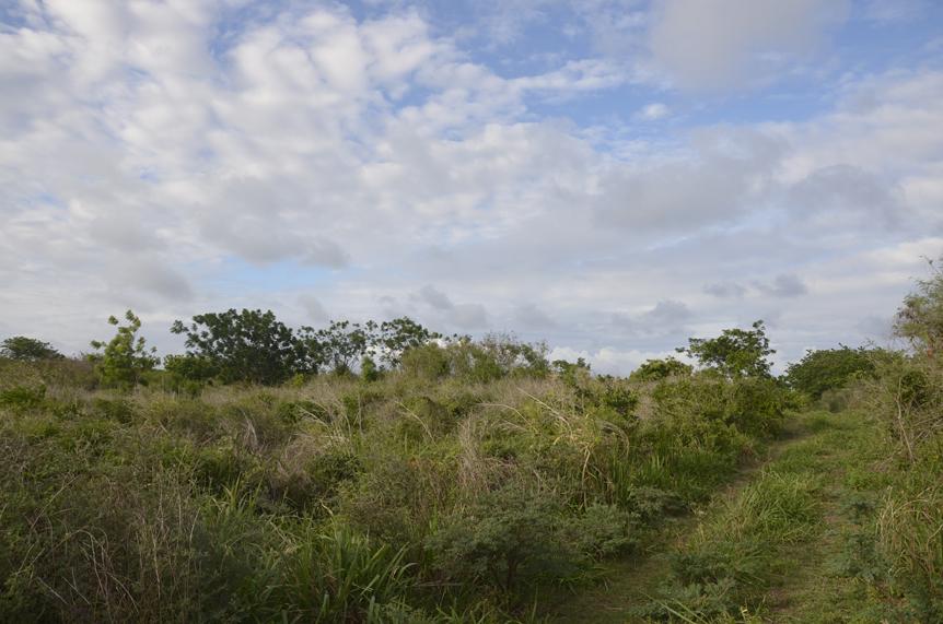 Roche Terre land